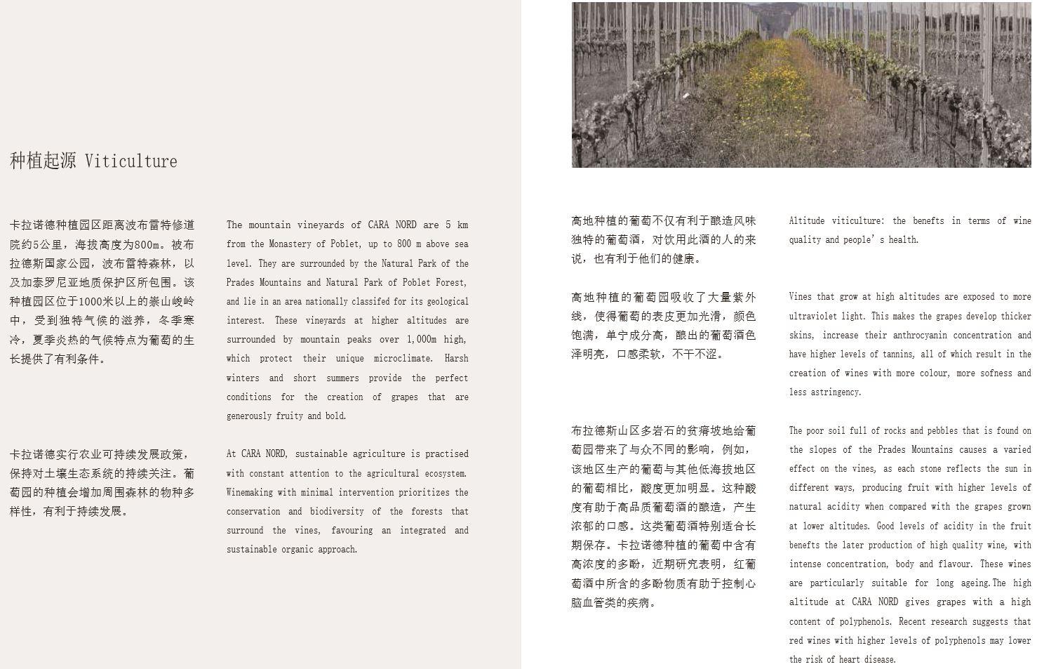 Catàleg xinès'18 (3)